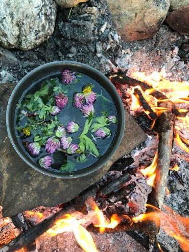 Red clover, wild geranium, and dandelion tea